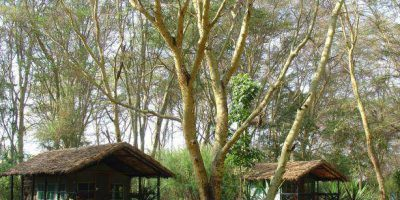 Migunga Tented Camp 2